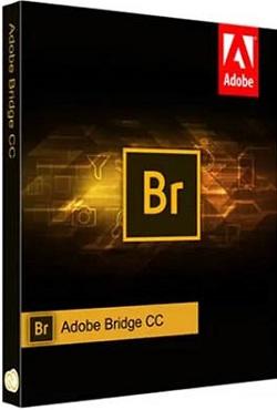 Adobe Bridge 2020