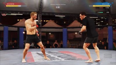 UFC 4 на ПК